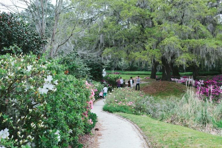 Charleston_Spring-10