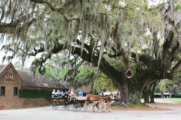 Charleston_Spring-36
