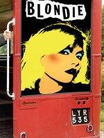 Targeting the Grey Consumer, Blondie