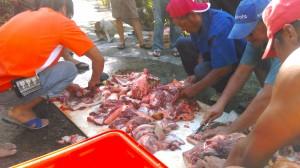 lakancin butchering a pig. 2014 october in 'atolan. photograph by djh