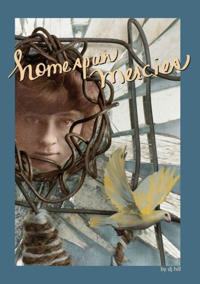 Homespun Mercies, by DJ Hill