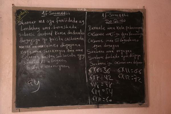 language learning2