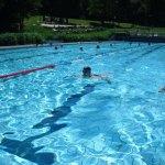sponsorenschwimmen2