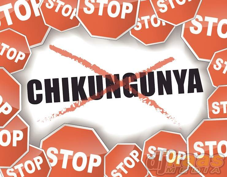 Vector illustration of stop chikungunya epidemic concept