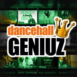 Download Kodi Dancehall Reggae Add On!