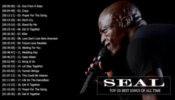 Seal Most Wanted Songs DJ Mixtape Download [Best of Seal Mix] - DJ