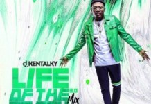 dj kentalky life of the party 3 0 mix 2019