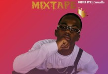 DJ Small Party Scatter Mix - Download Latest Party Mixtape 2020
