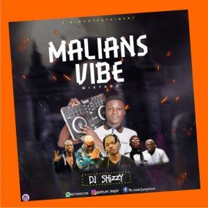 DJ Shizzy Malians Vibe Mixtape 2020 Mp3 Download