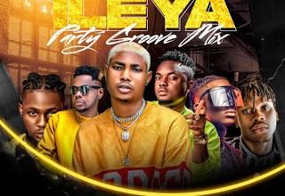 DJ OP Dot Ileya Party Groove Mixtape