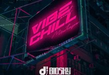 DJ Biosky Vibe And Chill Mix