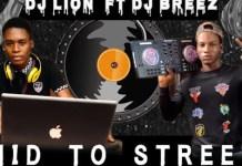 DJ Lion Ft DJ Breez Mid To Street Mixtape