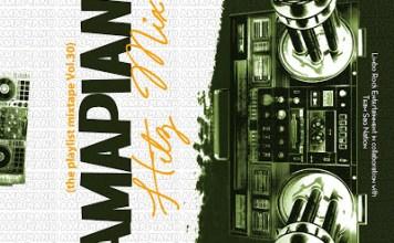 DJ Limbo Amapiano Hitz Mix Vol 30