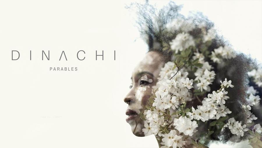 Dinachi Parables