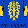Sosena Gebre Eyesus, begena, disque ethiopien, harpe ethiopienne, harpe du roi david, Little Axe Records, musicienne ethiopienne, musique orthodoxe, spiritualité