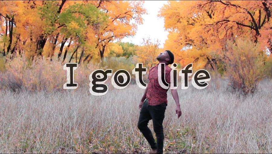 I Got Life, The Sun, Raashan Ahmad, nouvel album, cover, hip-hop, reprise, nina simone, Ain't Got No, reprise hip-hop