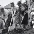 Et pendant ce temps dans le reste du monde, Communal Work, Benedikt, groupe norvégien, folk