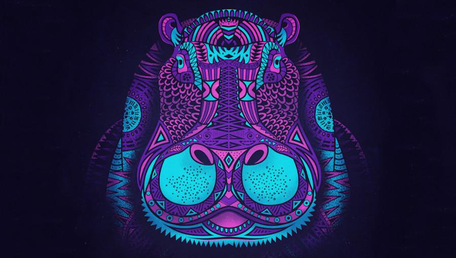 Hippo Sound System, Music For Your Mind, Jungle, drum n bass, KOG, kweku, Franz Von Song, MC Spyda, afro, soukous, global, dj hiphoppapotamus