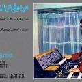 Oriental Music, Ammar El Sherei, organiste, musicien egyptien, Wewantsounds, Soutelphan, réédition, Mohamed Abdal Wahab, 1976, organiste egyptien, synthétiseur