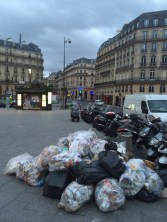 Paris may have a garbage problem.