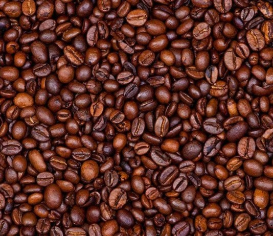 robutsa coffee