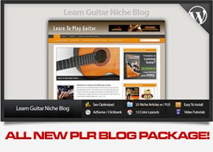 Learn to Play Guitar Niche