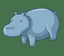 p347_hippopotamus