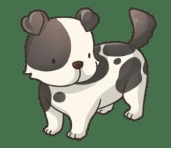 p352_Dog