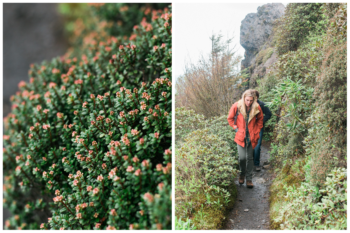 flowers-on-mountainside-charlies-bunion-engagement-Jill and Daniel