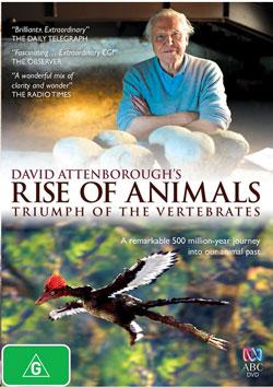 Rise-of-animals