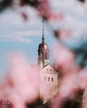 plakat fotograficzny szczecin zamek książąt pomorskich magnolie