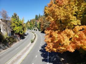 the road to nevada city