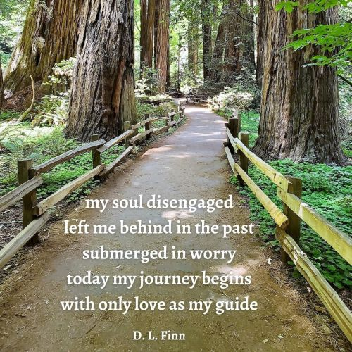 Photo of path in redwood forest. Poem included in picture: my soul disengaged left me behind in the past submerged in worry today my journey begins with only love as my guide