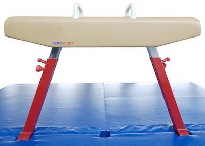 Gimnasticheskii kon universalnyi