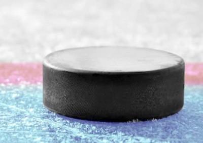 Шайба для хоккея. Виды и применение. Производство и особенности