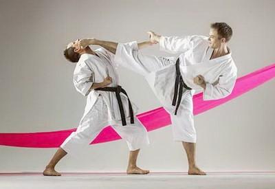 Edinoborstva Karate