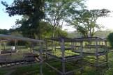 seed houses