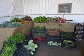 La Cañada stall selling organic fruits and vegetables