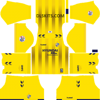 Goalkeeper AFC Ulsan Hyundai Home Kit 2019 - DLS Kits - Dream League Soccer Kits URL 512x512