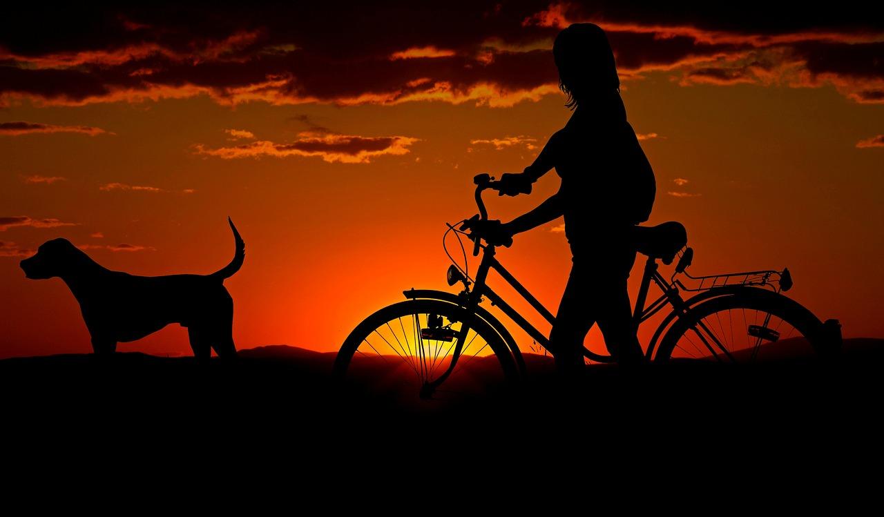 dziewczyna z rowerem i psem
