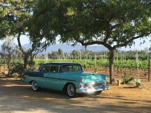 1956 Chevrolet, Temecula vineyard (USA).