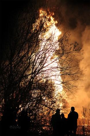 Falisolle grand feu (4)