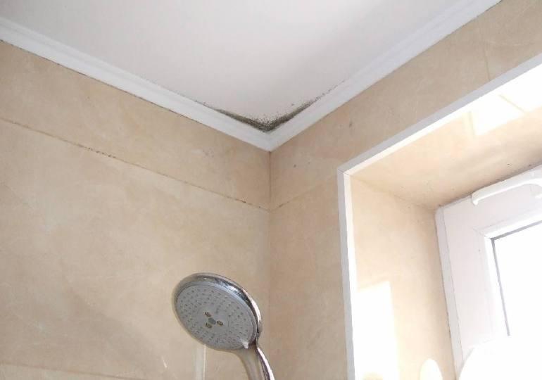 Почему не стоит делать гипсокартонный потолок в ванной?