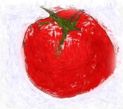 Tomato Drawing