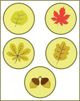 autumn_symbols