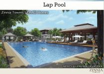 Lap Pool Zinnia