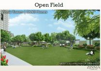 Open Field Zinnia DMCI