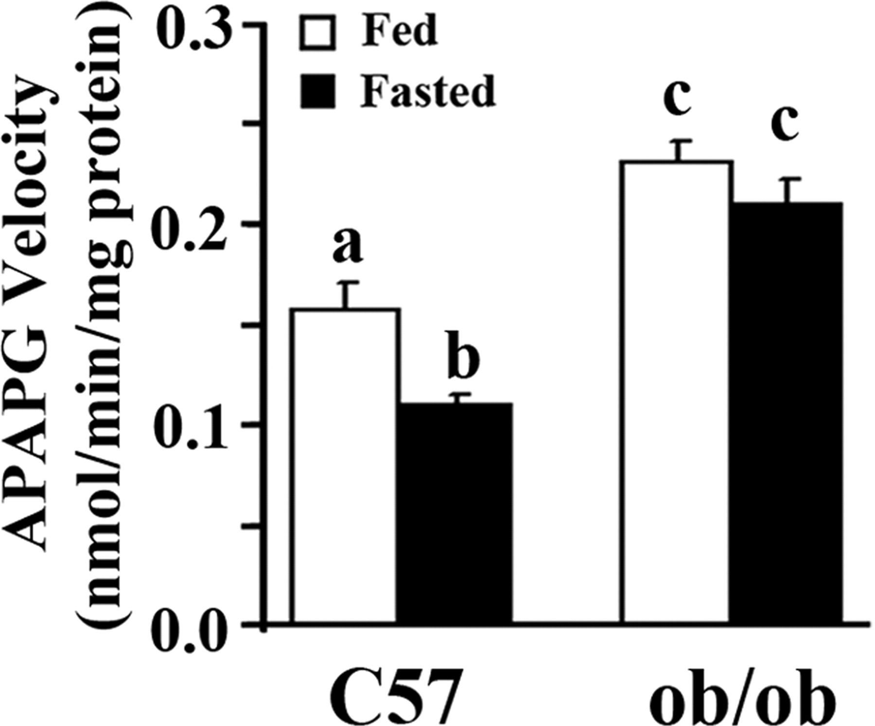 Udp Glucuronosyltransferase Expression In Mouse Liver Is Increased In Obesity And Fasting