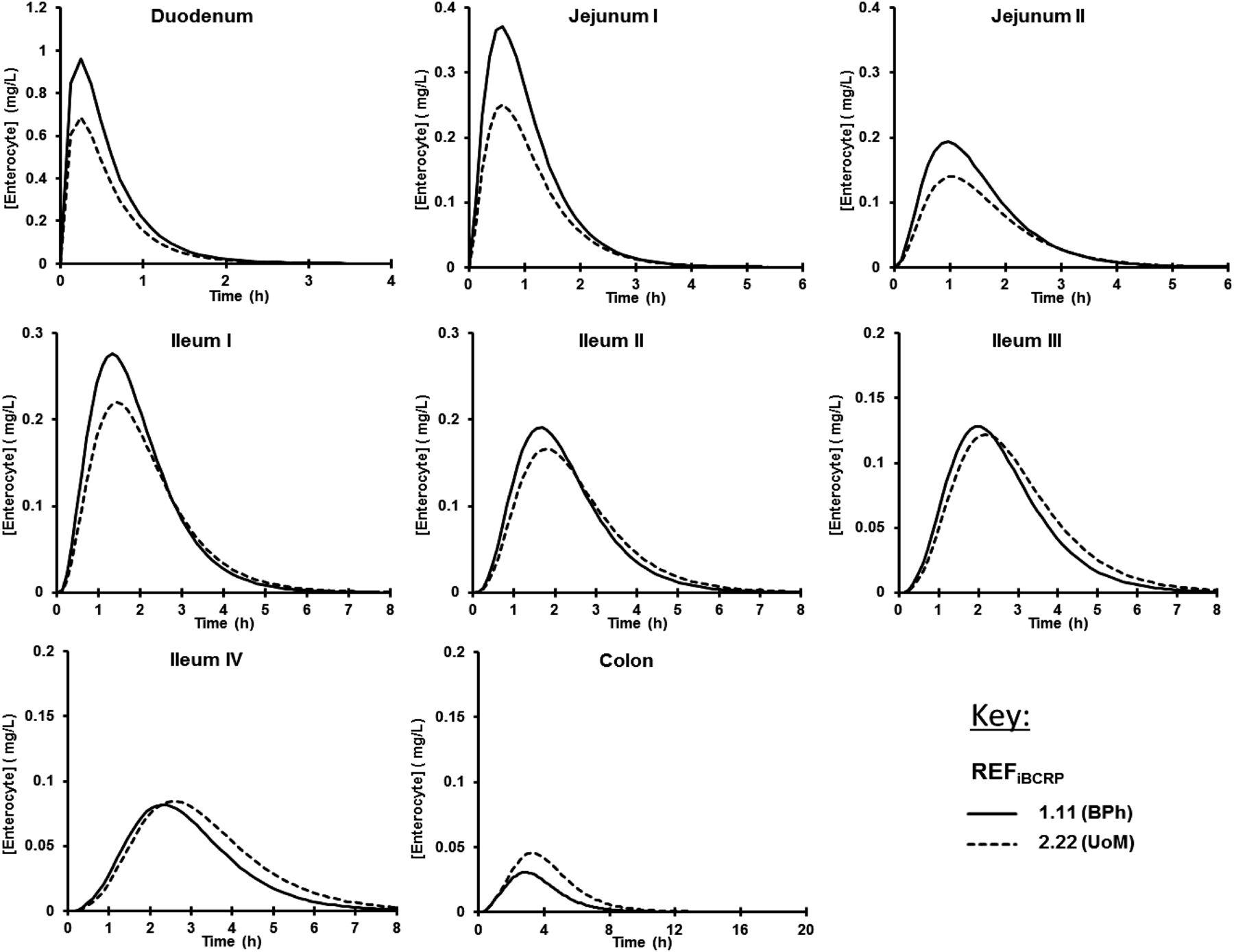 In Vitro In Vivo Extrapolation Scaling Factors For