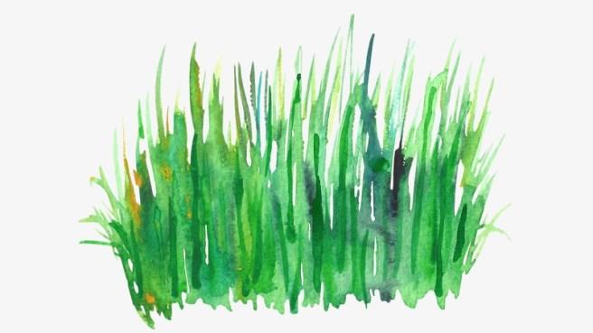 just-grass